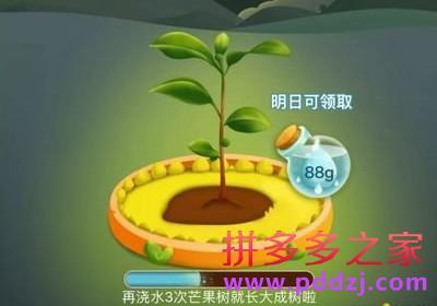 拼多多种树安全吗?怎么领水滴来种树?